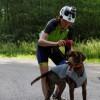 Comment j'échauffe mes chiens avant une sortie caniVTT?