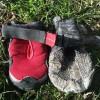 Test des bottines et chaussures pour chien