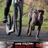 18 et 19 Février 2017: CaniVTT de issoire (Auvergne)